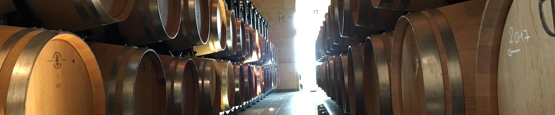 Besök på härliga vingårdar